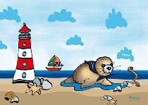 Bildmagnet Seehund