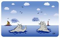 Brettchen Seehund Moin Moin